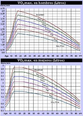 essay on vo2max A vo2 max study determines how efficiently your body uses oxygen during exercise the more aerobically fit you are, the greater your body's capacity to transport and use oxygen.