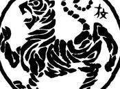principios shotokai shotokan:una breve aproximacion