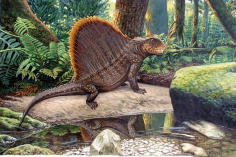 Para gustos, reptiles. - Paperblog