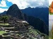 Coaching Gastroturístico: posibilidades comida turismo Perú asociado