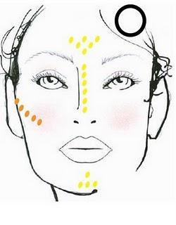 Morfología del rostro