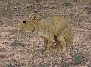 Animales extinguidos recientemente