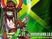 efectos marihuana memoria personalidad