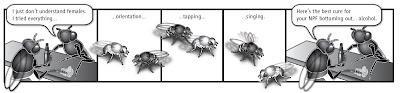Ciencia Friki II: las moscas insatisfechas sexualmente se dan a la bebida