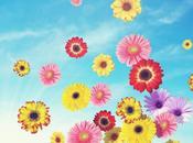 Spring dreams 2012 buylevard