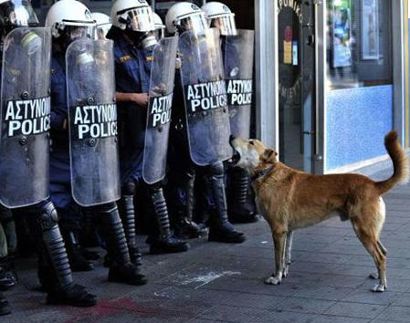 Lukanikos un perro con ideales