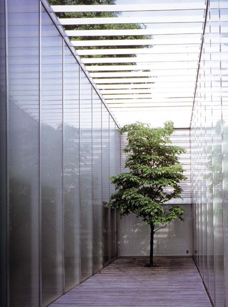 Jardines de dise o en japon paperblog for Arboles jardin japones
