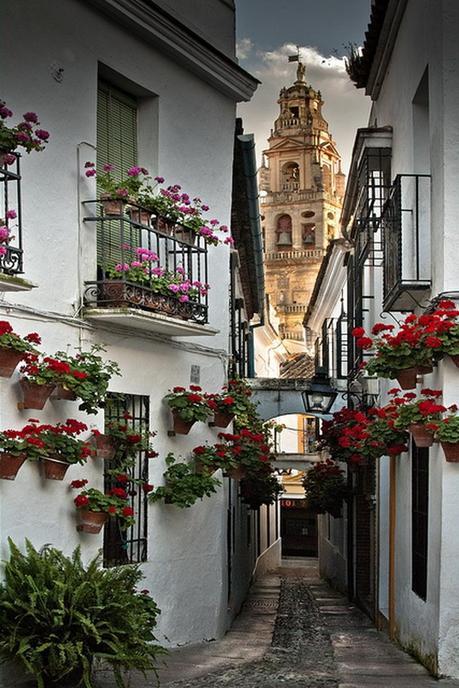 Los amador de Sevilla  y mi juderia de Córdoba