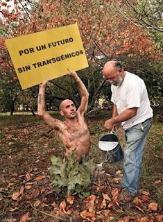 Resultado de imagen para greenpeace rescatando
