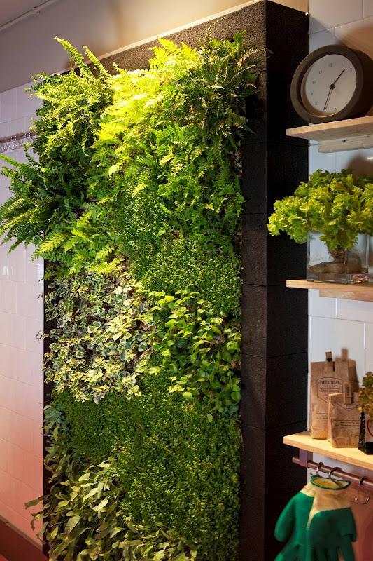 Jard n vertical de interior en la reforma de una cocina for Jardin vertical interior