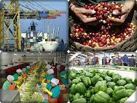 Sugieren promover más las exportaciones