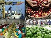 Sugieren promover exportaciones