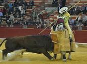 Infeliz. Torrestrella vacas