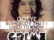 Gotye_somebody that used know