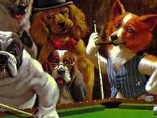 Como jugar perro