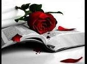 Sant Jordi, rosa, libro matrimonio