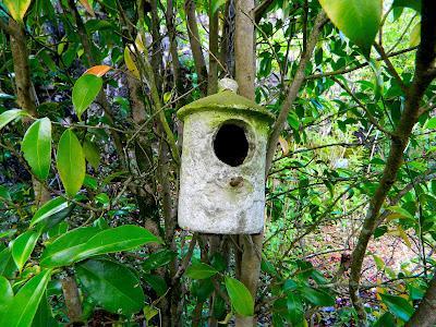 El jard n de la saleta en mayo paperblog for Pajarera jardin