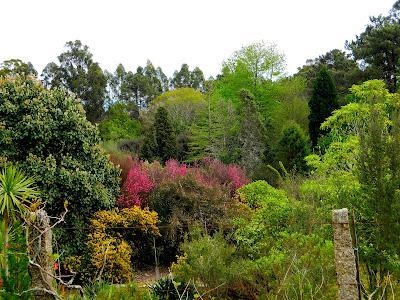 El jard n de la saleta en abril paperblog for Jardines de abril