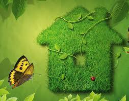 Ecofatiga, Responsabilidad Ecológica