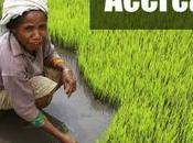 Conferencia Naciones Unidas sobre Desarrollo Sostenible: Río+20