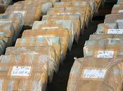 COBERTURA: Pueto Rico: Detectan 1,288 kilos cocaína