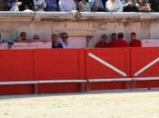 torero Castaño