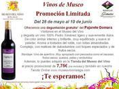 Promoción Bodegas Gomara Museo vino Málaga