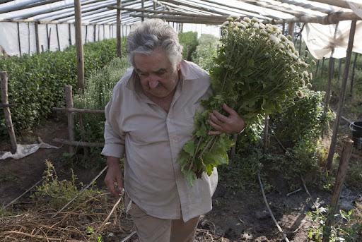 CRÉALO:  Mujica, el presidente más pobre del MUNDO