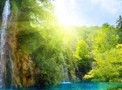 Mundial Medio Ambiente 2012