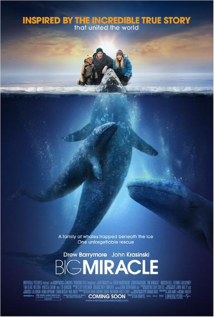 Cine: Big Miracle