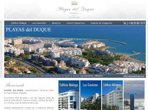 Web inmobiliaria en tiempos de crisis del sector