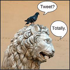 Totally Tweet.