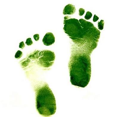 Naturalmente Mamá: 5 pasos sencillos para una vida más ecológica!