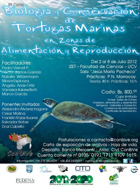 Curso 'Biología Conservación Tortugas Marinas Zonas Alimentación Reproducción'