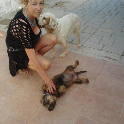 en línea perra flaco en Albacete