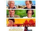 exótico Hotel Marigold