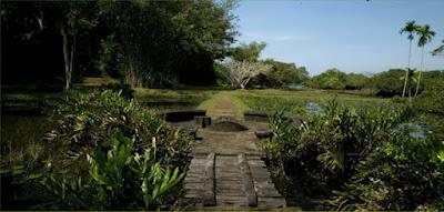 Jardines exóticos: Lunuganga