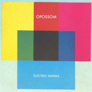 Opossom – Electric Hawaii