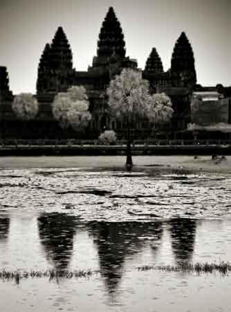 Fotografía del Templo de Angkor (Camboya), Tony Catany.