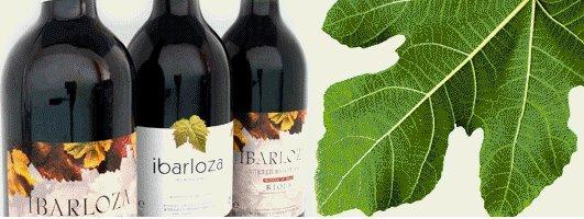 ibarloza 1 Vino Ecológico Ibarloza
