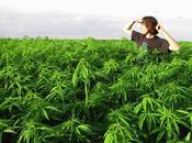 futuro guerra contra drogas