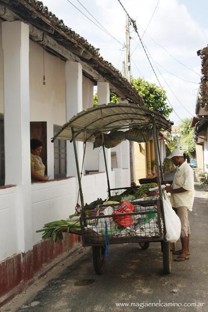 Qué hacer y ver en Sri Lanka