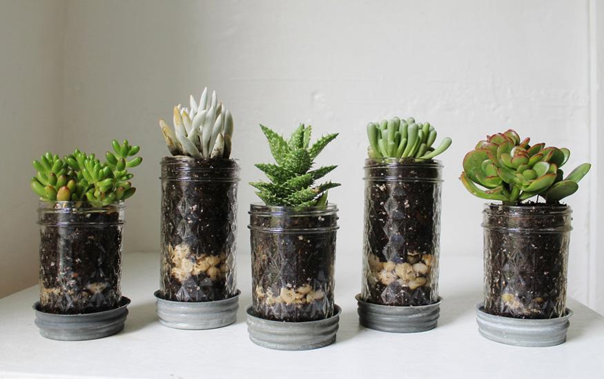 reciclaje en tu jardin 02 Reciclaje en tu jardin