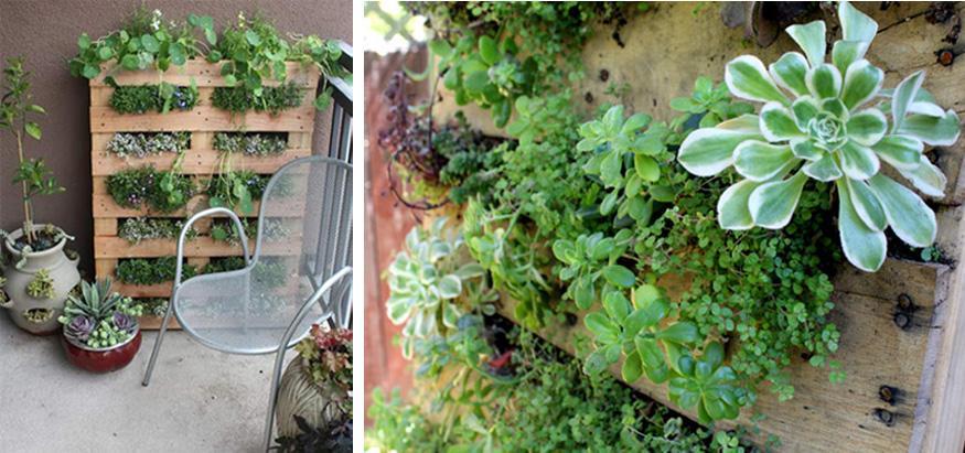 reciclaje en tu jardin 06 Reciclaje en tu jardin