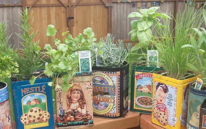 reciclaje en tu jardin 03 Reciclaje en tu jardin