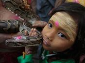 Myanmar fotos