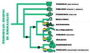 Biodiversidad y sexualidad