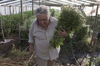 """Mujica: """"Yo no soy pobre"""""""
