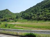 Road Trip Japón