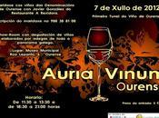 Auria Vinum Ourense julio 2012)